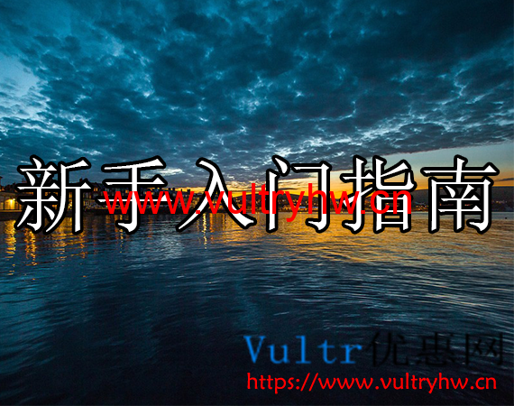 Vultr新手入门指南
